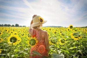 夏のだるさなどの夏ばてには ビタミンB群